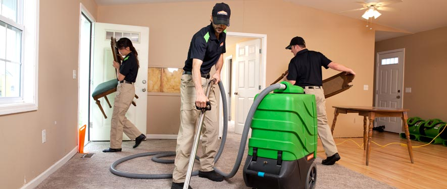 Mckinney, TX cleaning services
